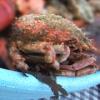 Recette Araignée de Mer (Entrée - Gastronomique)