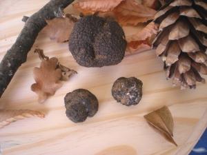 Pâtes Fraiches aux Truffes Noires - image 4