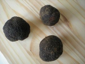 Pâtes Fraiches aux Truffes Noires - image 5