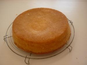 Gâteau au Chocolat Blanc et Abricots - image 4