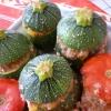 Recette Courgettes Boules + Tomates Farcies (Plat complet - Cuisine familiale)